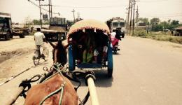 Journey to the Indian-Nepalese border by horse cart to pick up the luggage of Michael and Katrin.