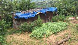 This hut in the village of Dalits has no power. Since the earthquake, the family is living in this makeshift hut. Before they had a mud house ...