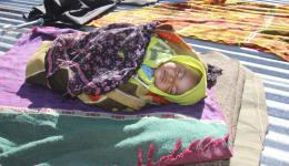 A Little child is blissfully sleeping on a flat roof packed in blankets.