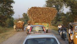 After our first visit to the colony. Return trip to Hyderabad in the twilight. Typical Indian style loading of a tractor.