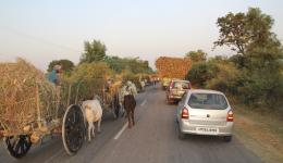 We are passing by a full row of bullock carts. These conditions do only allow very slow driving.
