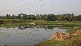 Die Felder sind überschwemmt. Teile der Auswirkung des Wirbelsturms Phaillin sind noch zu sehen. Trotzdem kann der Bau des Wasserprojektes fortgeführt werden.