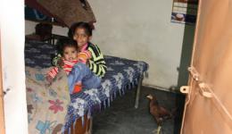 ...in diesem Zimmer wohnt eine vierköpfige Familie- gemeinsam mit ihren Hühnern...