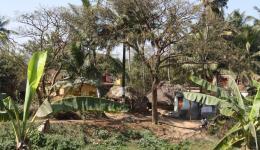 22.02.2012 - Am 22.02. fahren wir um fünf Uhr morgens mit dem Siebensitzertaxi nach Vir Bhadra Pur in der Nähe von Marsa Ghai an die Ostküste von Orissa. Wir wollen ein Dorf besuchen, welches laut unserem indischen Freund Nike sehr arm ist.