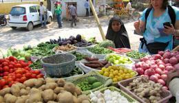 Andrea beim Einkaufen von Gemüse. Katrin und Geeta handeln stets den besten Preis aus und dann wird für die Kinder auf der Straße gekocht...