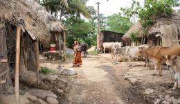 Die deutlich unter der Armutsgrenze lebenden Einwohner der vier Dörfer Virbhadra Pur, Sahu Saib, Kusum Pur und Barpal Diya sollen mittels einer Rohrleitung (Pipeline) mit dem nahegelegenen Fluss verbunden werden.