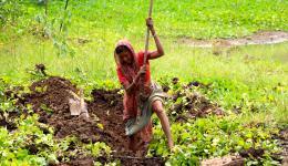 09. Juni - Die Grabungsarbeiten an der Hauptlinie der Wasserleitung werden ohne Unterstützung durch Bulldozer durchgeführt, da das Gelände für so große Maschinen nicht zugänglich ist. Eine Frau gräbt mit viel Kraftaufwand.
