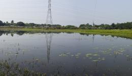 Hier sieht man Reste der Überschwemmung.