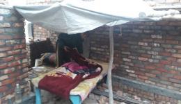 Das jetzige Schlaflager von Sunny- im Freien.