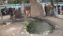 Several ponds with malodorous sewage are the cause of new diseases.