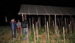 Hier ein aufgebautes Treibhaus, welches wir am späten Abend noch besichtigen können. Das Material wurde beim letzten Aufenthalt gekauft. Hier wachsen bereits Tomaten und Chillipflanzen in voller Pracht.
