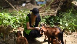 Alina taking care of the animals in the villages.