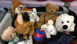 Cuddly toys from colleagues from Benno's Bike Café in Baunach are waiting to be distributed to the children...