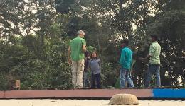 Besprechung der Reparatur von undichten Dachplatten...