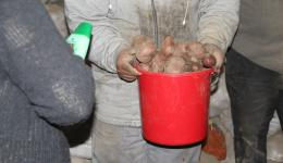 A short time later, the distribution of potatoes begins. Every resident gets a full bucket and families correspondingly more. Plus shampoo and soap that are left over from the purchase and distribution of the previous day.