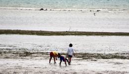 Menschen suchen im feuchten Sand nach Muscheln zum Essen, wie auch diese Kinder… Durch den starken Monsunwind mit Wellen bis zu 5 Metern Höhe können die Fischer zurzeit auch in anderen Teilen der Philippinen nicht aufs Meer hinaus.