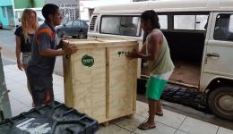 """The """"brick pressing machine"""" arrives: Cebolinha and an employee at the air freight service lift the heavy parts into the bus of Bianca and Seboniah."""