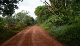 The second project takes the team to the Atlantic Rainforest in northeastern Brazil.