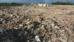 Wo früher Mangrovenwälder standen liegt - seit Jahrzehnten - Müll, soweit das Auge reicht.