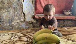 Vor allem die Bananen lösen große Begeisterung aus...