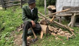 Alte Menschen sammeln Pilze, um sie auf dem Markt zu verkaufen. Damit kann die spärliche Rente um einige Euro aufgebessert werden.